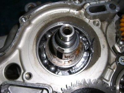 CIMG3558.JPG
